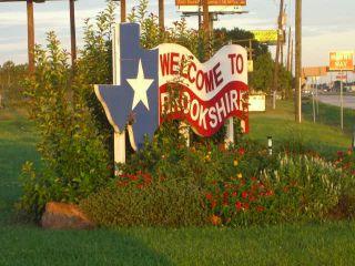 Mold Inspection Brookshire Texas