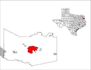 Mold Inspection Marshall Texas