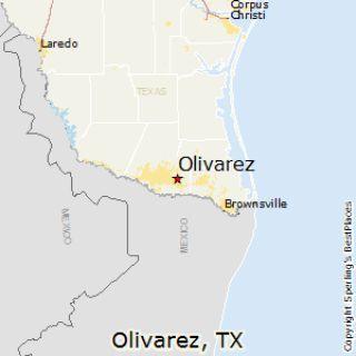 Mold Inspection Olivarez Texas