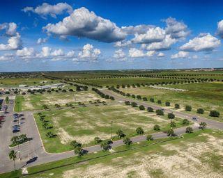 Mold Inspection Penitas Texas