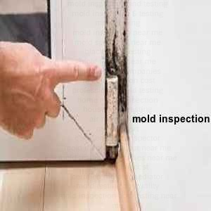 mold inspection Holly Lake Ranch